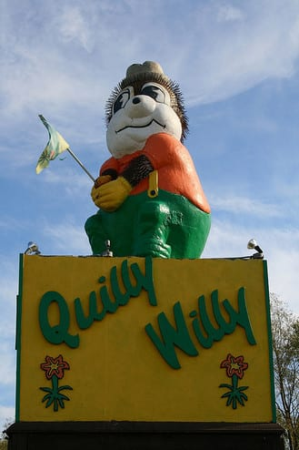 Quilly Willy.jpg