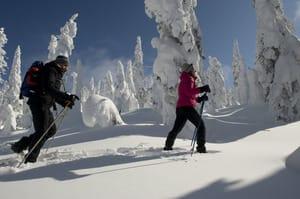 Vallée fantômes.jpg