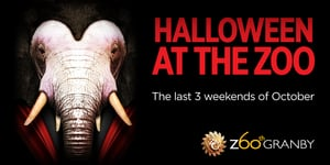 Halloween at Granby Zoo.jpg