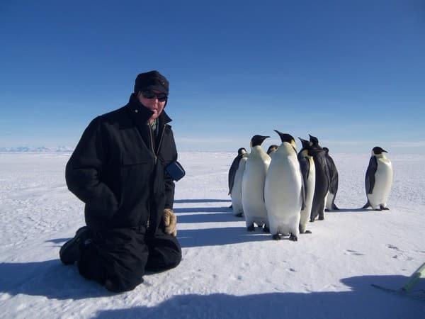 penguin pic.JPG