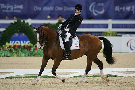 a rider on their brown horse that is doing some fancy footwork
