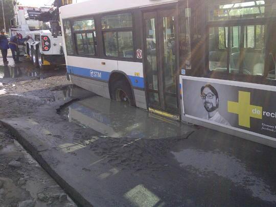 bus in hole.jpg