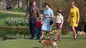 Royals & Animals: Till Death Do Us Part