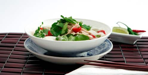 recipes_AsianChickenNoodleSoup-thumb-496x252-17407-1.jpeg