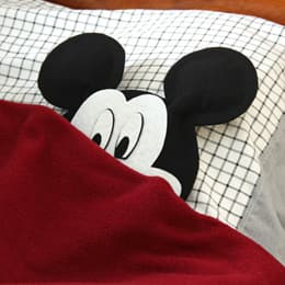 under-covers-mickey-craft-photo-260x260-clittlefield-D.jpg