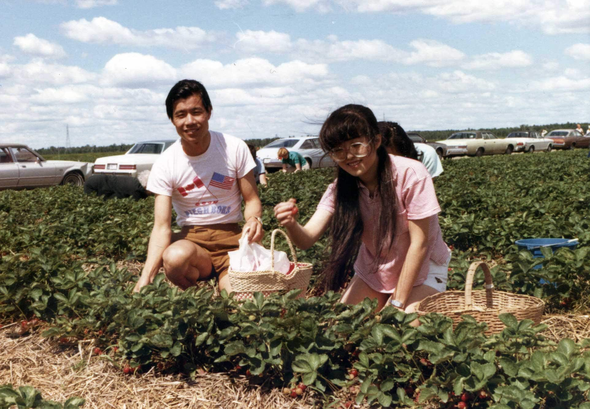 A couple sitting in a field picking strawberries