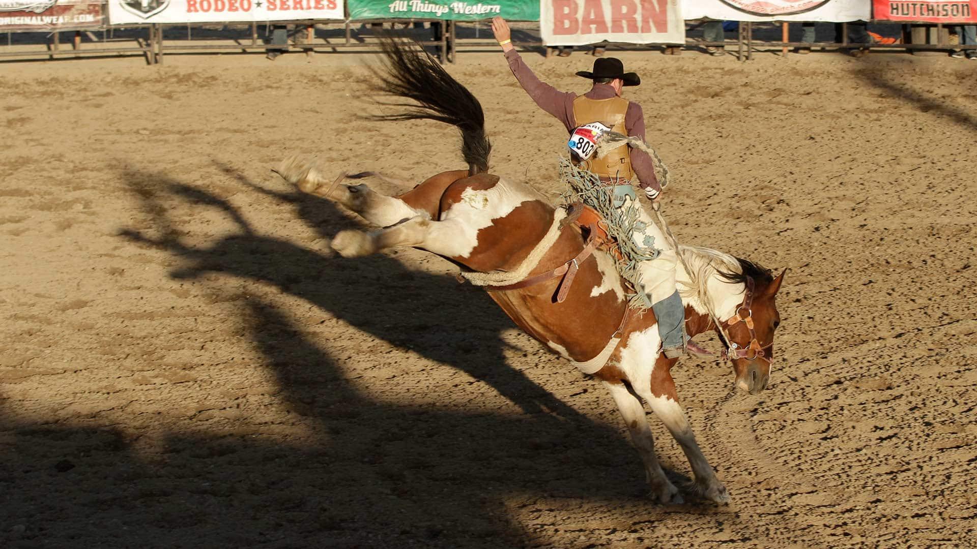 Cowboy Up Canadian Cowboy Jake Burwash On Heartland And