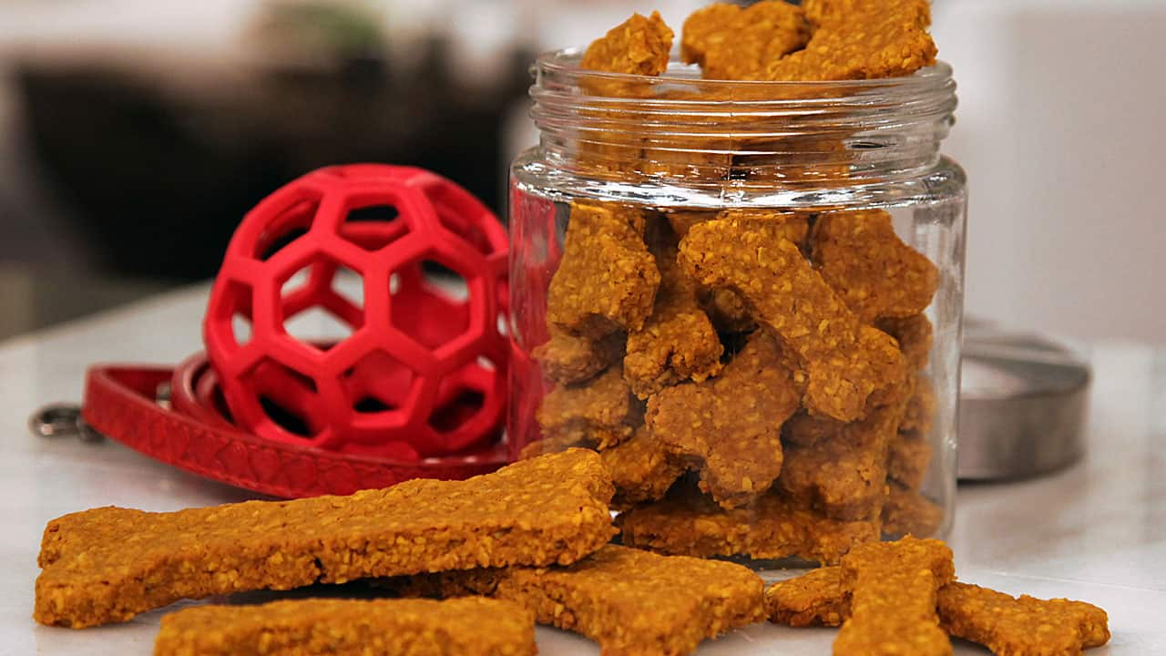 Dog Cookies Recipe Pumpkin