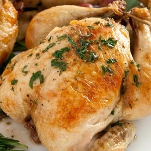 Roasted Cornish Hens with Chestnut Stuffing and Port Reduction