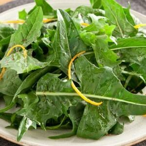 Recipe: Dandelion Greens with Honey Balsamic Dressing