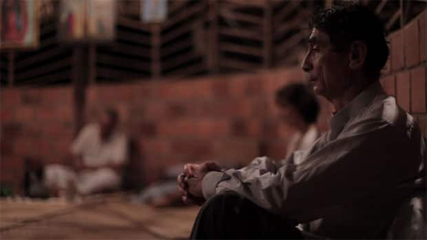 Dr. Gabor Maté is risking his reputation trying to establish an addictions program in Canada based on the traditional drug ayahuasca.