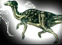 One of the largest duck-billed dinosaurs, known as Edmontosaurus.