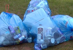 blue bag scavengers could face charges