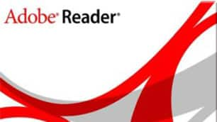 A total of 45 bugs were found in Adobe's Reader software this year.