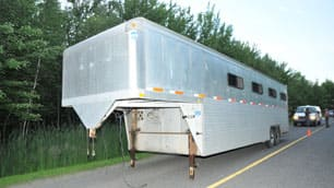 The animals were found in their trailer at the side of a rural  road in Saint-Edmond-de-Grantham. (Quebec provincial police)