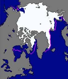 The U.S. National Snow and Ice Data Center's Arctic sea ice extent map for November 2010. The pink line marks the average ice extent for November between 1979 and 2000.
