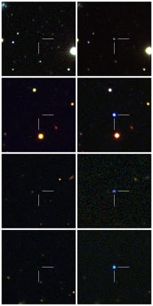 The images on the right show the four supernovas discovered by the Palomar Transient Factory. On the left is a comparison image of the same part of the night sky before each supernova appeared.