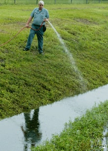 Municipal workers use either chemical pesticides or bacterial pathogens to kill mosquito larvae that accummulate in ditches and pools of stagnant water like this one in Orlando, Fla.