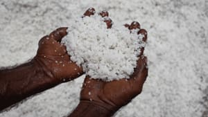 A man holds sea salt harvested from a salt field near Karachi, Pakistan. Salt is now being described with similarly elaborate vocabulary as wine, coffee and chocolate.
