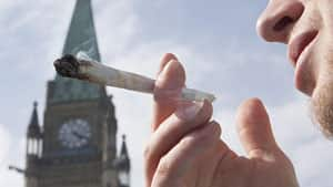 A demonstrator smokes marijuana on Parliament Hill in April, 2010, at an annual protest calling for the decriminalization of marijuana. Health Canada is holding talks on changes to Canada's medical marijuana access regulations.