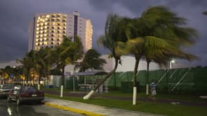 A tourist walks past palm trees swaying in winds caused by the proximity of Hurricane Rina hurricane off the coast of Quintana Roo in Cancun on Tuesday.
