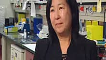 Pamela Ohashi said she's tempted to call an experimental immune therapy against melanoma a cure.