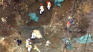Workers dug up a mass grave of sled dogs near Whistler, B.C., in May 2011.