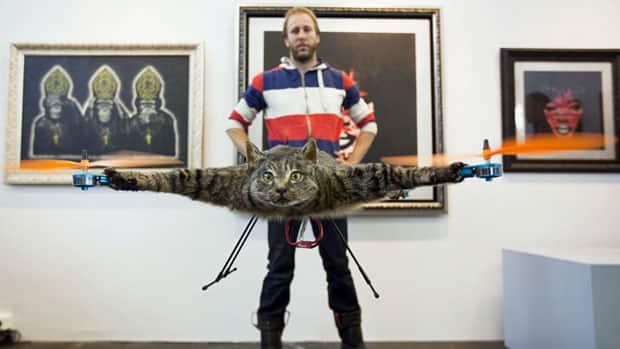 Как сделать для кота