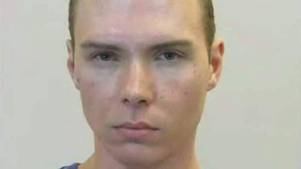 Luka Magnotta has been charged with the first-degree murder of 33-year-old Jun Lin, and has in the past been accused of torturing kittens.