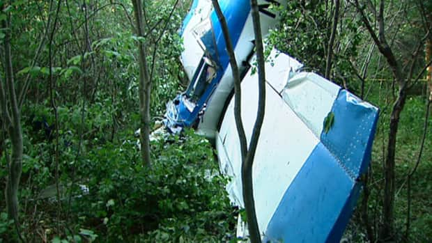 The plane crashed in the bush while the pilot was trying to reach the Carp Airport.