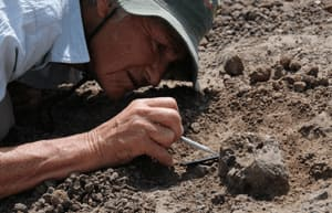 Meave Leakey carefully excavates the new face KNM-ER 62000 near Koobi Fora, northern Kenya.