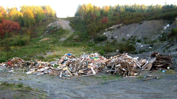 The debris of a house was dumped in the woods near Gander.