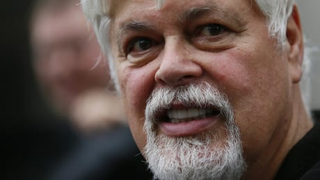 Paul Watson quits Sea Shepherd over U.S. court order