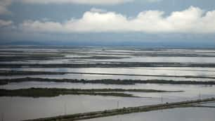 Farmland south of Rockhampton, Queensland, is inundated with flood water. Despite fresh rains, the overflowing Fitzroy River began to slowly recede on Thursday.