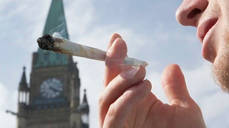 Group behind B.C. pot petition rallies the troops