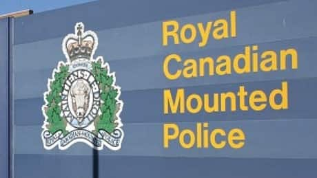 Police call Burnaby mother's disappearance 'high risk'