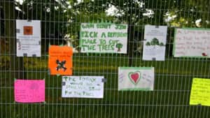 Residents posted a series of signs on a protective fence saying trees at Lansdowne Park are important to the community and should not be cut down.