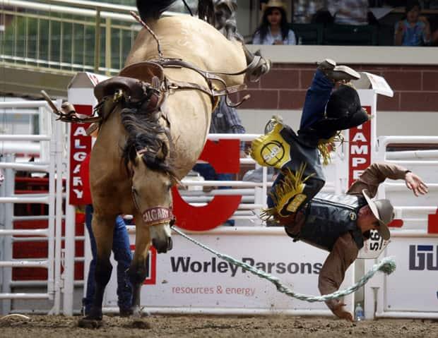 Calgary Stampede Gets Big Money Best Cowboys Calgary