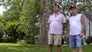 John Staccone, left, and Joe Staccone think what they do with their tree is their business.