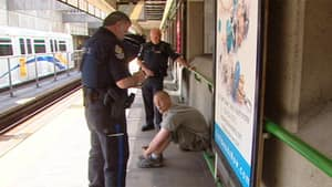 Transit Police check fares at a SkyTrain station.
