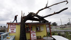 Lonney Sciortino prepares to cut down a tree which fell on top of his tamale stand during Isaac in Arabi, La., on Thursday.