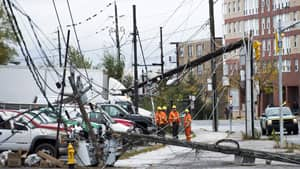 Many power lines in Toronto were downed, causing outages, after superstorm Sandy hit the city late Monday night.