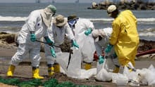 Clean-up crews shovel oil from the Deepwater Horizon oil spill off Fourchon Beach in Port Fourchon, La., in May, 2010.