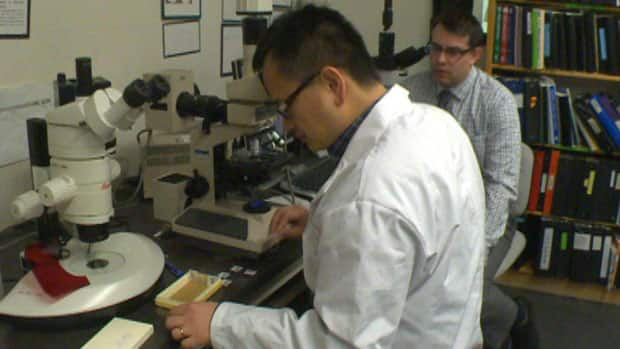 Memorial University researchers Kenneth Kao and John Toms have received a grant to extend their prostate cancer research for two more years.