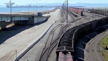 Environmentalists vow to fight coal terminal expansion plans