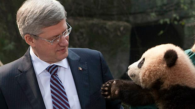 Prime Minister Stephen Harper shares a photo opportunity with a panda at the Chongqing Zoo in Chongqing, China last February. Thirty Canadian executives accompanied Harper on his 2012 tour, and some of them had their expenses covered by the government.