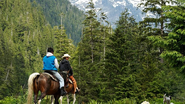 The Clayoqout Wilderness Resort offers guided horse riding trips and other outdoor activities for its guests.