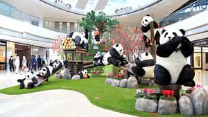 Lifelike pandas are part of the ifc mall's Chinese New Year promotion campaign in Hong Kong. After Christmas, the mall makes its second biggest investment of the year in Chinese New Year festivities.