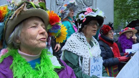 Protesters march against GMO giant Monsanto in 430 cities