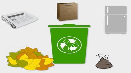 5 ways to keep your food scraps bins free of pests